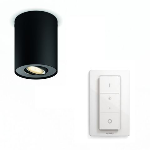 Pillar Hue Single Spot Black 5.5W