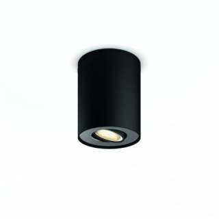 Pillar Hue Ext. Spot Single Spot Black 1