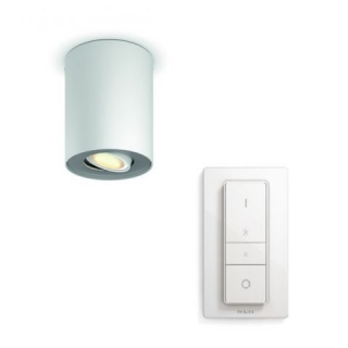 Pillar Hue Single Spot White 5.5W