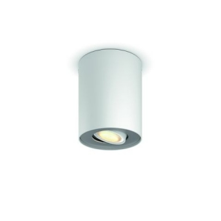 Pillar Hue Ext. Spot Single Spot White 1