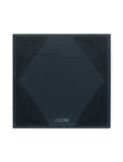 Loxone Touch Pure Gen. 1 - gray tree